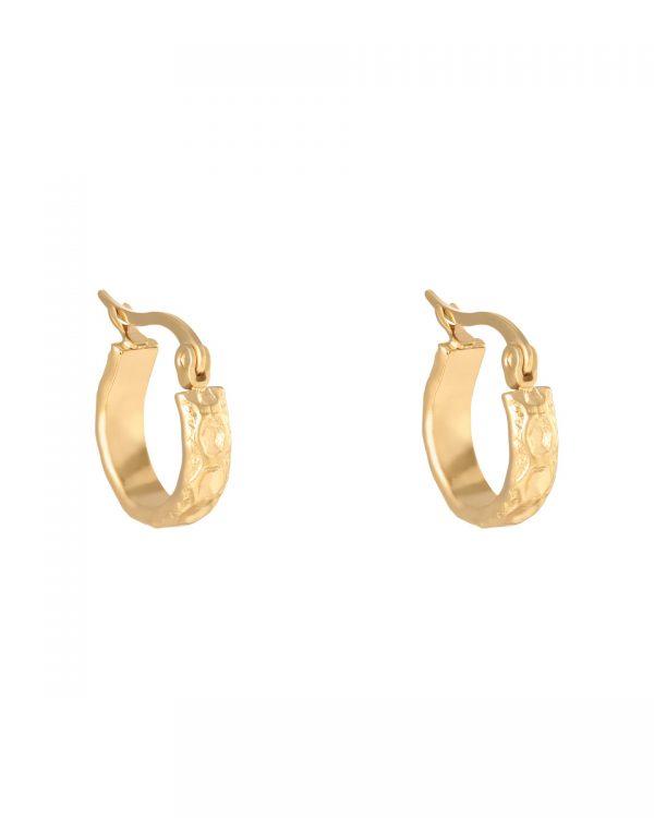 Gouden stainless steel oorbellen